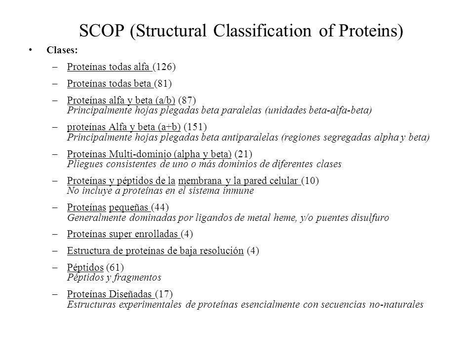 SCOP (Structural Classification of Proteins) Clases: –Proteínas todas alfa (126) –Proteínas todas beta (81) –Proteínas alfa y beta (a/b) (87) Principa