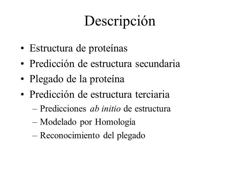 Descripción Estructura de proteínas Predicción de estructura secundaria Plegado de la proteína Predicción de estructura terciaria –Predicciones ab ini