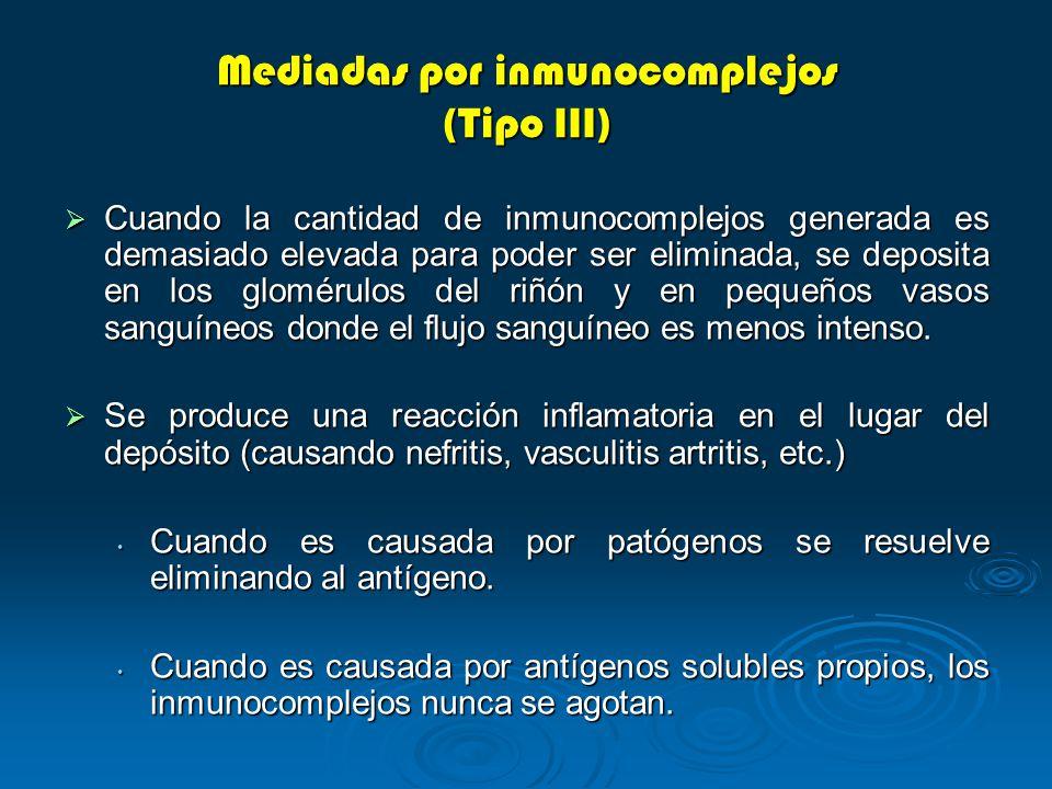 Cuando la cantidad de inmunocomplejos generada es demasiado elevada para poder ser eliminada, se deposita en los glomérulos del riñón y en pequeños va
