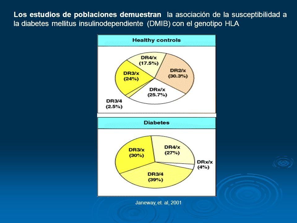 Los estudios de poblaciones demuestran la asociación de la susceptibilidad a la diabetes mellitus insulinodependiente (DMIB) con el genotipo HLA Janew