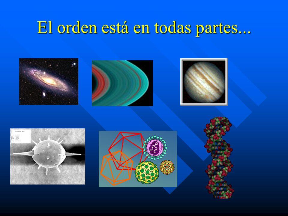El orden es en realidad lo que llamamos simetría, es decir, consiste en descubrir patrones que se repiten ya sea en el tiempo o el espacio.
