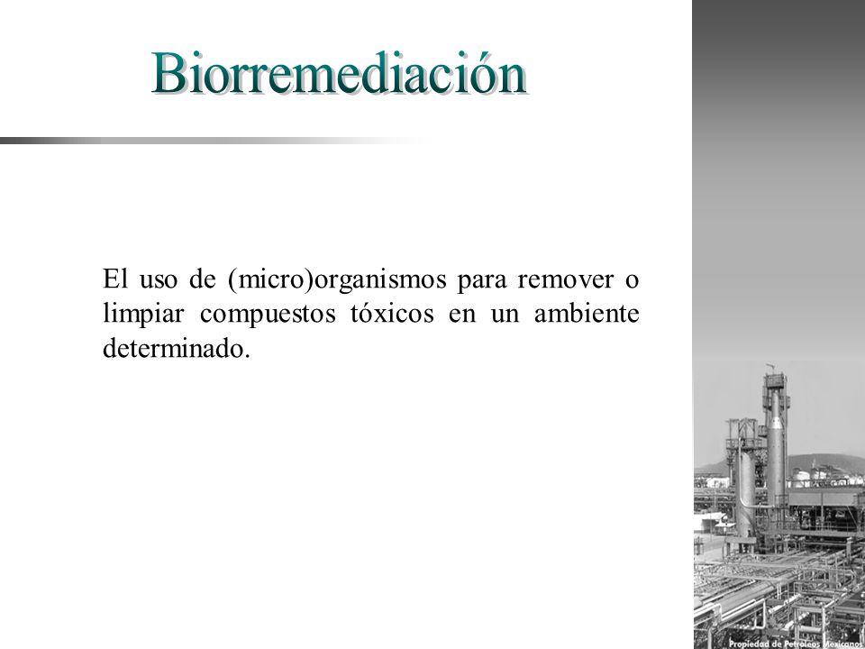El uso de (micro)organismos para remover o limpiar compuestos tóxicos en un ambiente determinado.