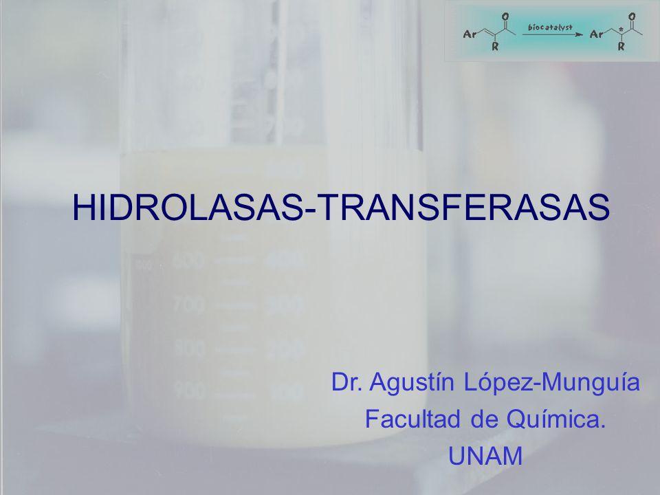 Dr. Agustín López-Munguía Facultad de Química. UNAM HIDROLASAS-TRANSFERASAS