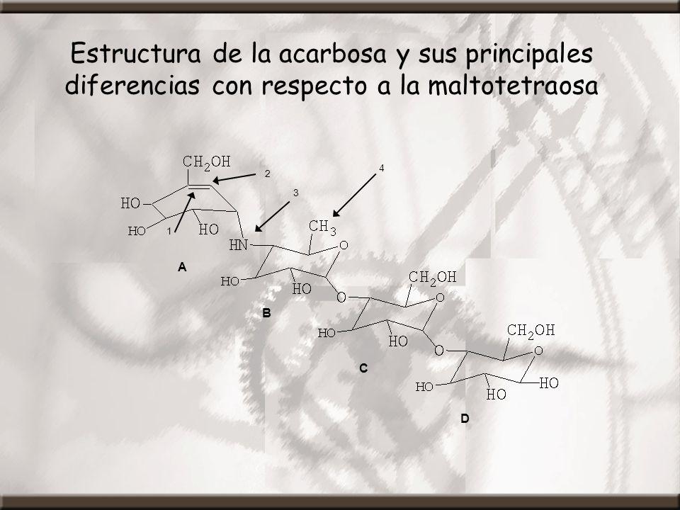 Estructura de la acarbosa y sus principales diferencias con respecto a la maltotetraosa A B C D 1 2 3 4