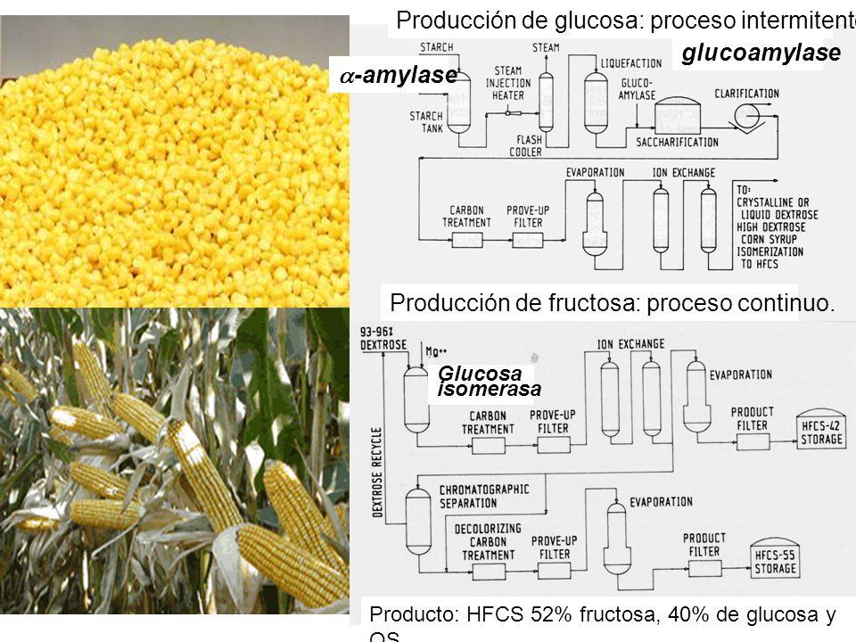 -amylase glucoamylase Producción de glucosa: proceso intermitente. Producción de fructosa: proceso continuo. Glucosa isomerasa Producto: HFCS 52% fruc