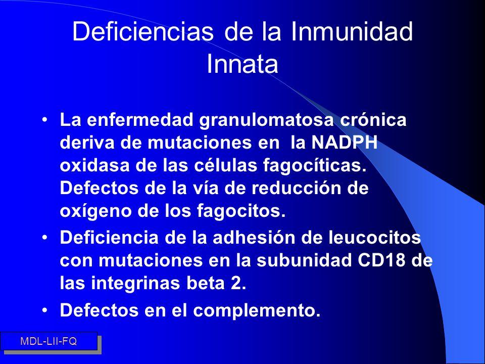 Deficiencias de la Inmunidad Innata La enfermedad granulomatosa crónica deriva de mutaciones en la NADPH oxidasa de las células fagocíticas. Defectos
