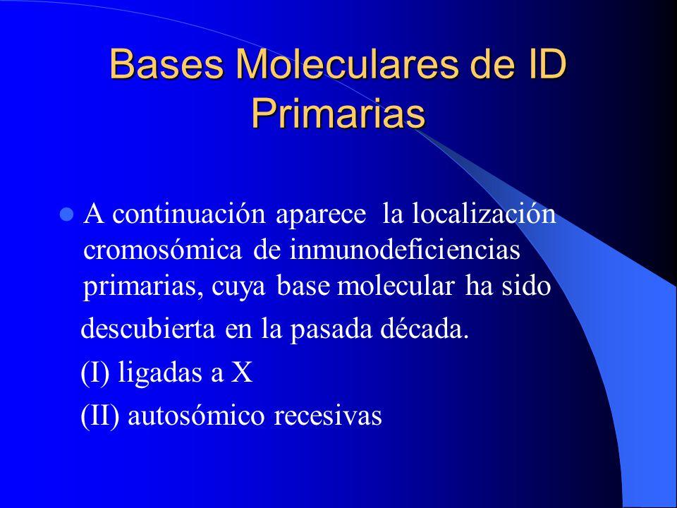 Bases Moleculares de ID Primarias A continuación aparece la localización cromosómica de inmunodeficiencias primarias, cuya base molecular ha sido desc