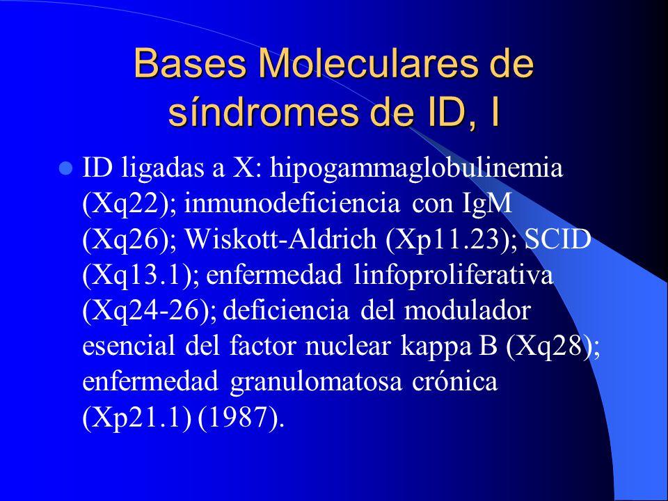 Bases Moleculares de síndromes de ID, I ID ligadas a X: hipogammaglobulinemia (Xq22); inmunodeficiencia con IgM (Xq26); Wiskott-Aldrich (Xp11.23); SCI