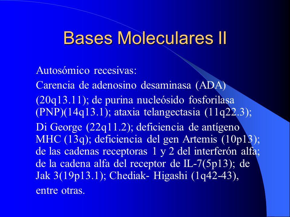 Bases Moleculares II Autosómico recesivas: Carencia de adenosino desaminasa (ADA) (20q13.11); de purina nucleósido fosforilasa (PNP)(14q13.1); ataxia