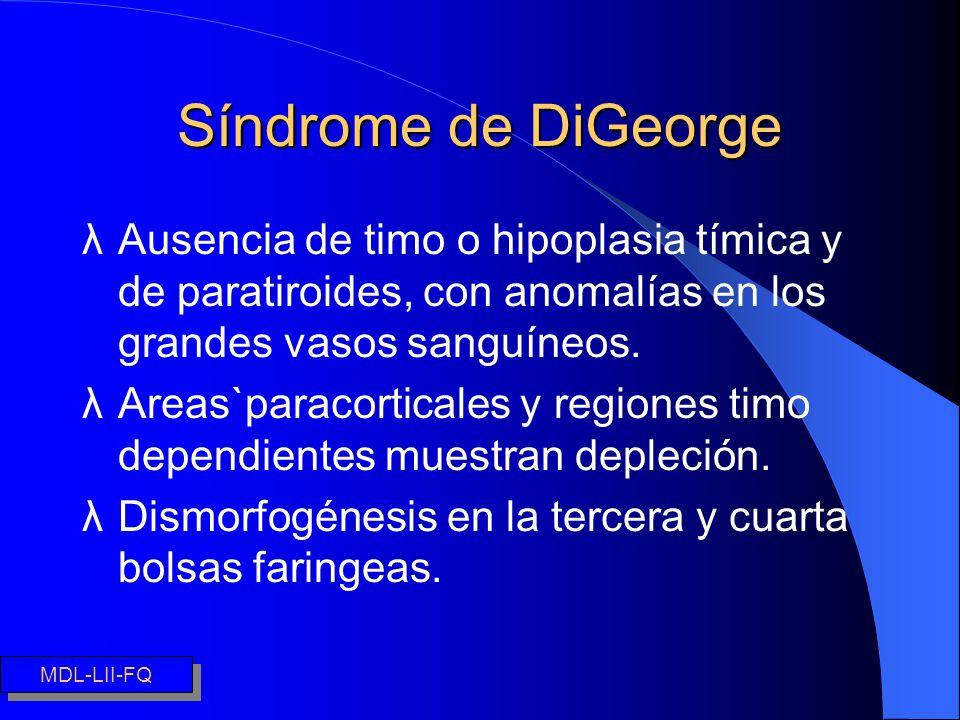Síndrome de DiGeorge λAusencia de timo o hipoplasia tímica y de paratiroides, con anomalías en los grandes vasos sanguíneos. λAreas`paracorticales y r