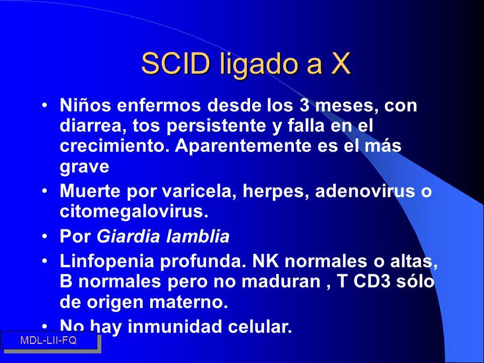 SCID ligado a X Niños enfermos desde los 3 meses, con diarrea, tos persistente y falla en el crecimiento. Aparentemente es el más grave Muerte por var