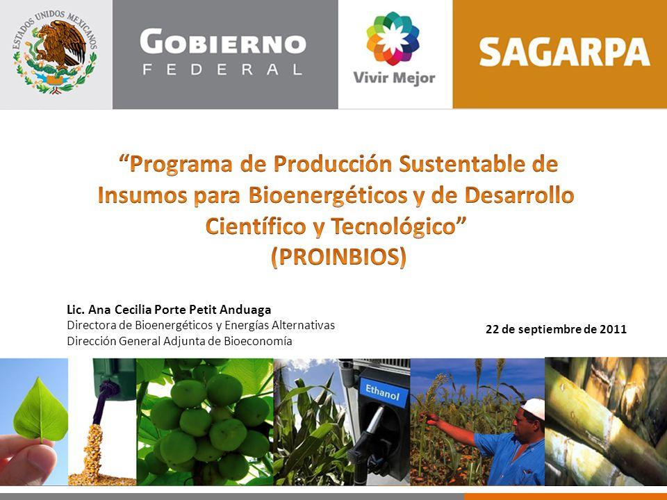22 de septiembre de 2011 Lic. Ana Cecilia Porte Petit Anduaga Directora de Bioenergéticos y Energías Alternativas Dirección General Adjunta de Bioecon