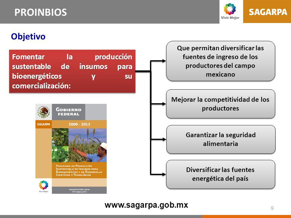 Fomentar la producción sustentable de insumos para bioenergéticos y su comercialización: Diversificar las fuentes energética del país Mejorar la compe
