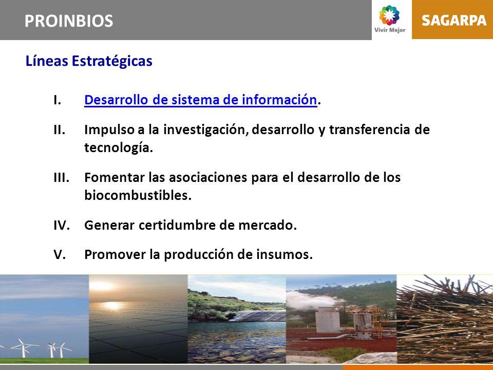 10 Líneas Estrategias del PROINBIOS PROINBIOS Líneas Estratégicas I.Desarrollo de sistema de información.Desarrollo de sistema de información II.Impulso a la investigación, desarrollo y transferencia de tecnología.