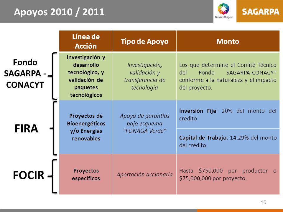 15 Línea de Acción Tipo de ApoyoMonto Investigación y desarrollo tecnológico, y validación de paquetes tecnológicos Investigación, validación y transf