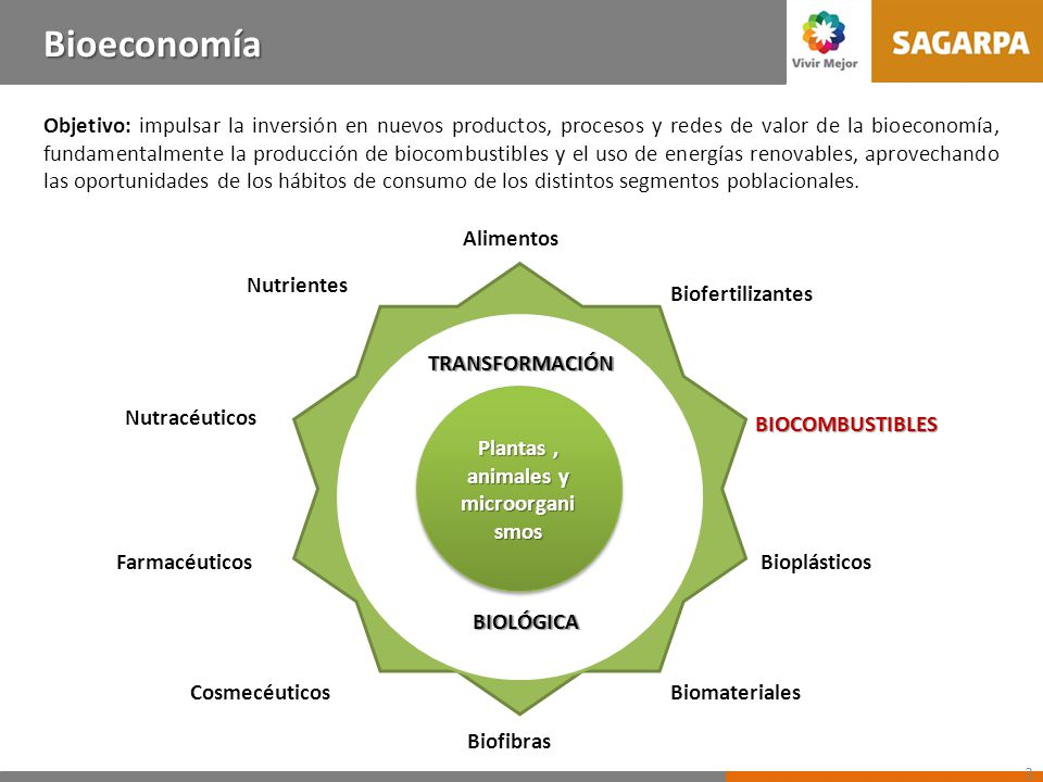Nutrientes Biofertilizantes Cosmecéuticos BIOCOMBUSTIBLES Plantas, animales y microorgani smos Plantas, animales y microorgani smos TRANSFORMACIÓN BIO