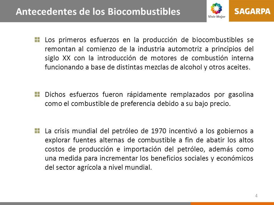 4 Antecedentes de los Biocombustibles Los primeros esfuerzos en la producción de biocombustibles se remontan al comienzo de la industria automotriz a principios del siglo XX con la introducción de motores de combustión interna funcionando a base de distintas mezclas de alcohol y otros aceites.
