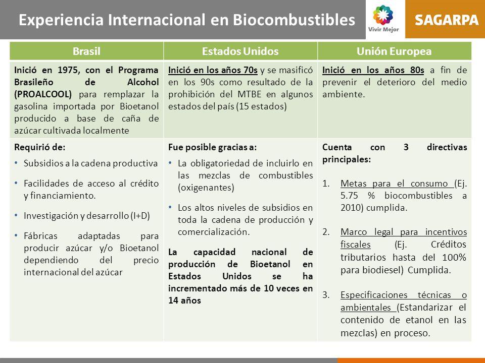 Experiencia Internacional en Biocombustibles BrasilEstados UnidosUnión Europea Inició en 1975, con el Programa Brasileño de Alcohol (PROALCOOL) para remplazar la gasolina importada por Bioetanol producido a base de caña de azúcar cultivada localmente Inició en los años 70s y se masificó en los 90s como resultado de la prohibición del MTBE en algunos estados del país (15 estados) Inició en los años 80s a fin de prevenir el deterioro del medio ambiente.