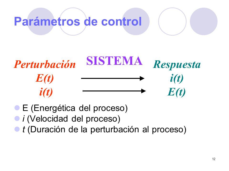 12 Parámetros de control E (Energética del proceso) i (Velocidad del proceso) t (Duración de la perturbación al proceso) Perturbación E(t) i(t) Respue