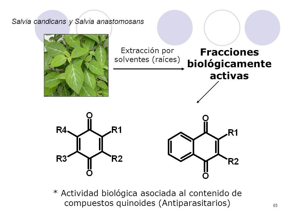 65 Extracción por solventes (raíces) Fracciones biológicamente activas * Actividad biológica asociada al contenido de compuestos quinoides (Antiparasi