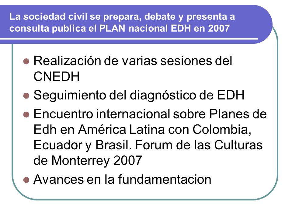 La sociedad civil se prepara, debate y presenta a consulta publica el PLAN nacional EDH en 2007 Realización de varias sesiones del CNEDH Seguimiento del diagnóstico de EDH Encuentro internacional sobre Planes de Edh en América Latina con Colombia, Ecuador y Brasil.