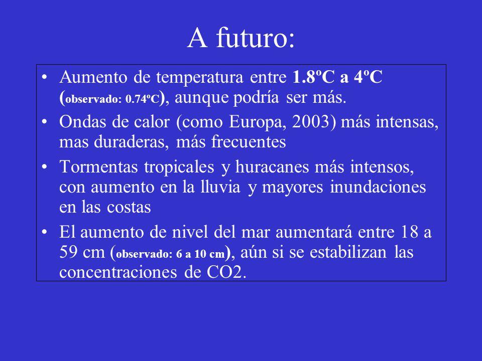 A futuro: Aumento de temperatura entre 1.8ºC a 4ºC ( observado: 0.74ºC ), aunque podría ser más. Ondas de calor (como Europa, 2003) más intensas, mas
