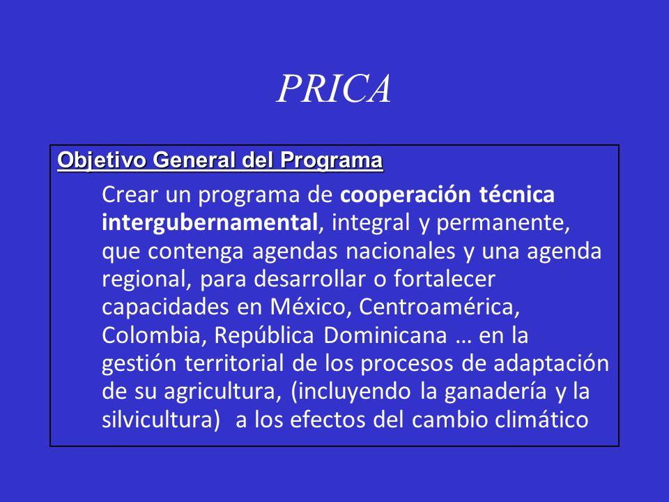 PRICA Objetivo General del Programa Crear un programa de cooperación técnica intergubernamental, integral y permanente, que contenga agendas nacionale