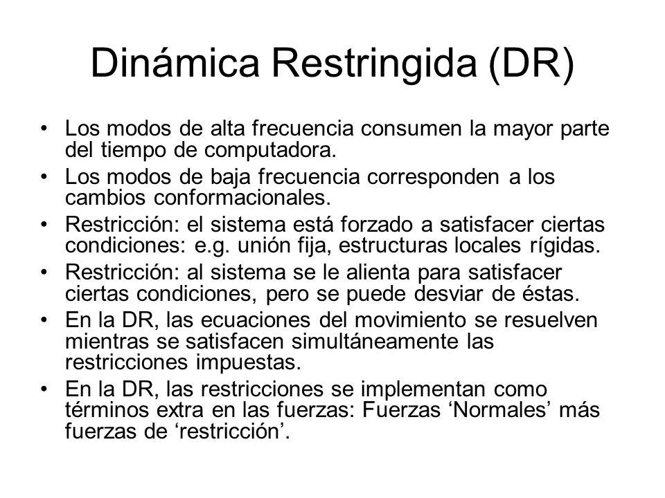 Dinámica Restringida (DR) Los modos de alta frecuencia consumen la mayor parte del tiempo de computadora. Los modos de baja frecuencia corresponden a