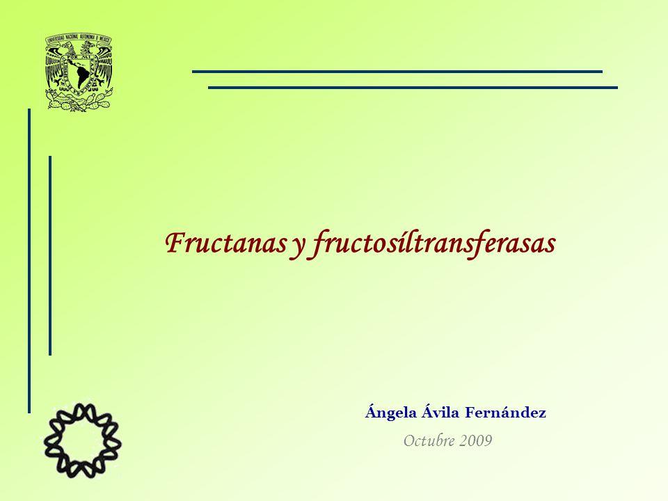 Ángela Ávila Fernández Fructanas y fructosíltransferasas Octubre 2009