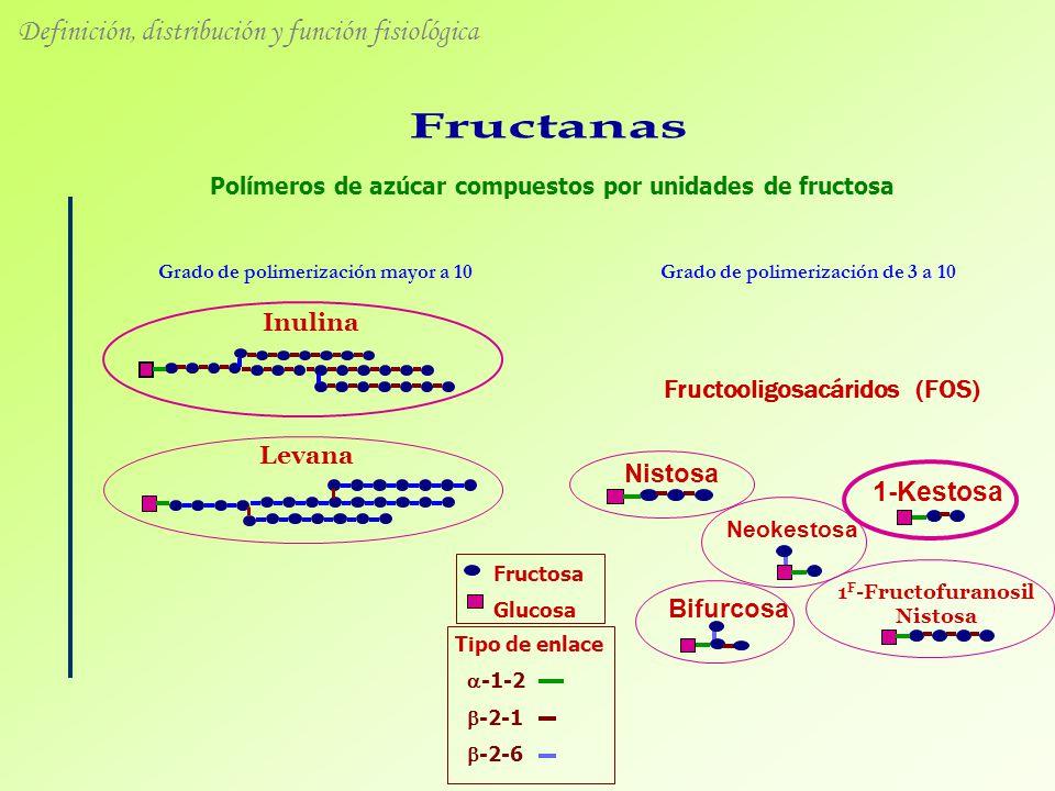 Tipo de enlace -1-2 -2-1 -2-6 Fructosa Glucosa Polímeros de azúcar compuestos por unidades de fructosa Grado de polimerización mayor a 10 Inulina Levana 1-Kestosa Nistosa 1 F -Fructofuranosil Nistosa Neokestosa Bifurcosa Fructooligosacáridos (FOS) Grado de polimerización de 3 a 10 Definición, distribución y función fisiológica