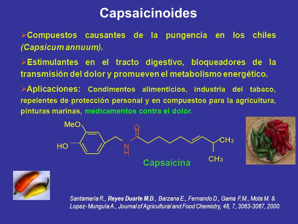 Capsaicinoides Compuestos causantes de la pungencia en los chiles (Capsicum annuum). Estimulantes en el tracto digestivo, bloqueadores de la transmisi
