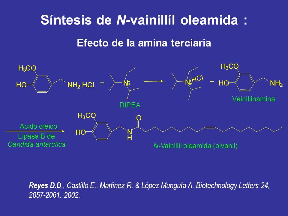Síntesis de N-vainillíl oleamida : Efecto de la amina terciaria H 3 CO HONH 2 HCl N + O H 3 CO HO N H N-Vainillíl oleamida (olvanil) DIPEA Lipasa B de