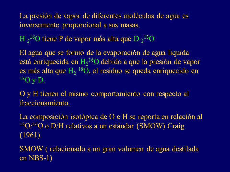 La presión de vapor de diferentes moléculas de agua es inversamente proporcional a sus masas. H 2 16 O tiene P de vapor más alta que D 2 18 O El agua