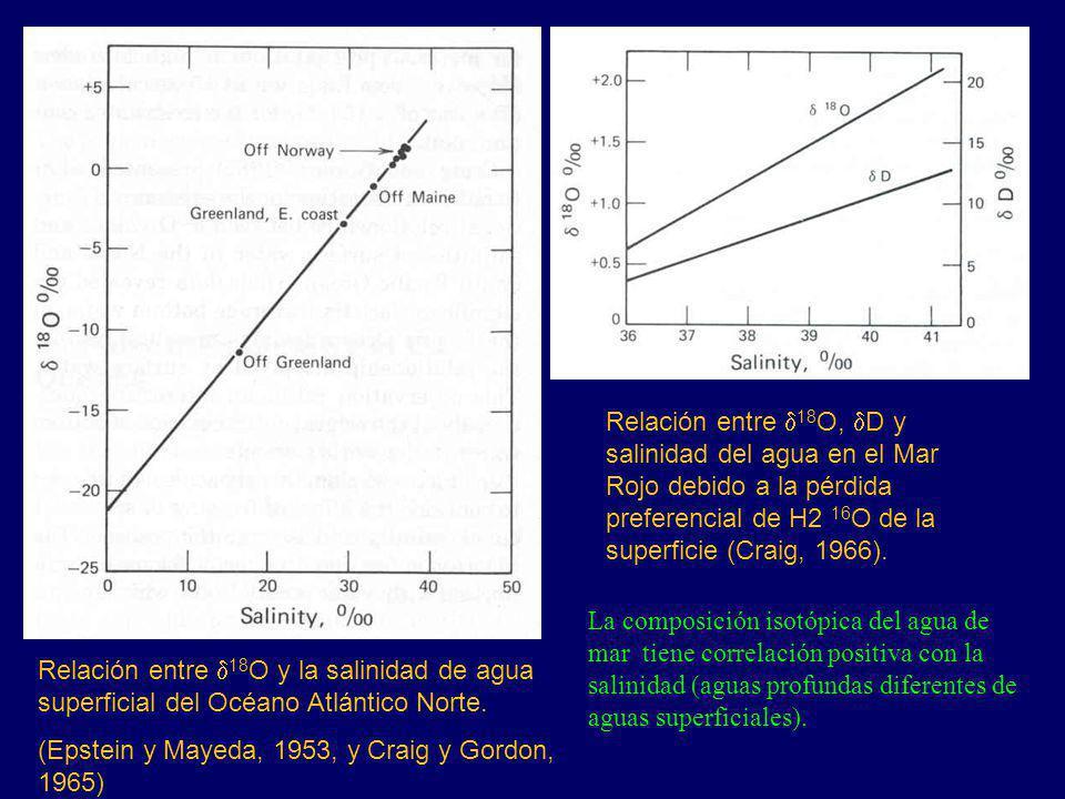 Relación entre 18 O y la salinidad de agua superficial del Océano Atlántico Norte. (Epstein y Mayeda, 1953, y Craig y Gordon, 1965) Relación entre 18