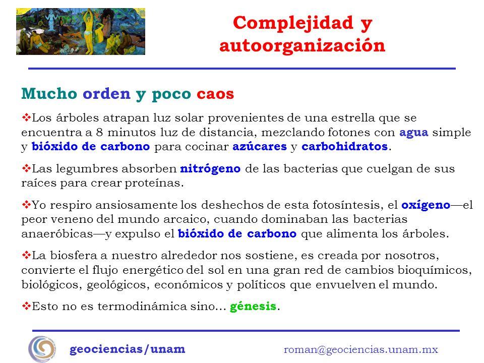 Complejidad y autoorganización geociencias/unam roman@geociencias.unam.mx Mucho orden y poco caos Los árboles atrapan luz solar provenientes de una es
