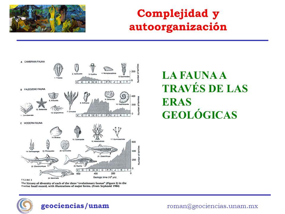 Complejidad y autoorganización geociencias/unam roman@geociencias.unam.mx LA FAUNA A TRAVÉS DE LAS ERAS GEOLÓGICAS