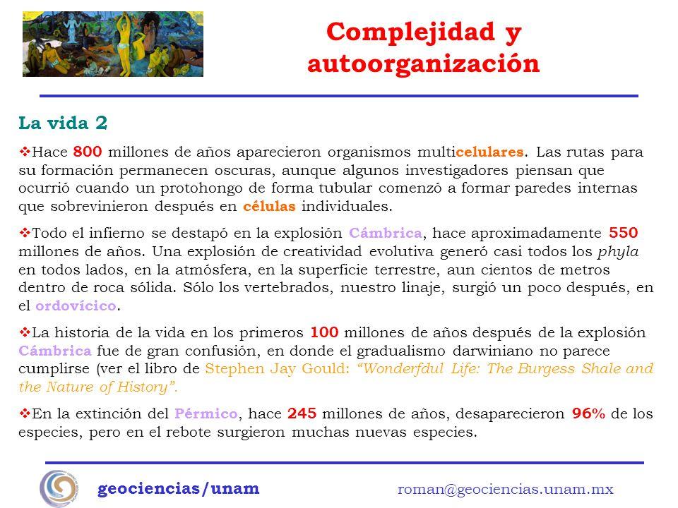 Complejidad y autoorganización geociencias/unam roman@geociencias.unam.mx La vida 2 Hace 800 millones de años aparecieron organismos multi celulares.