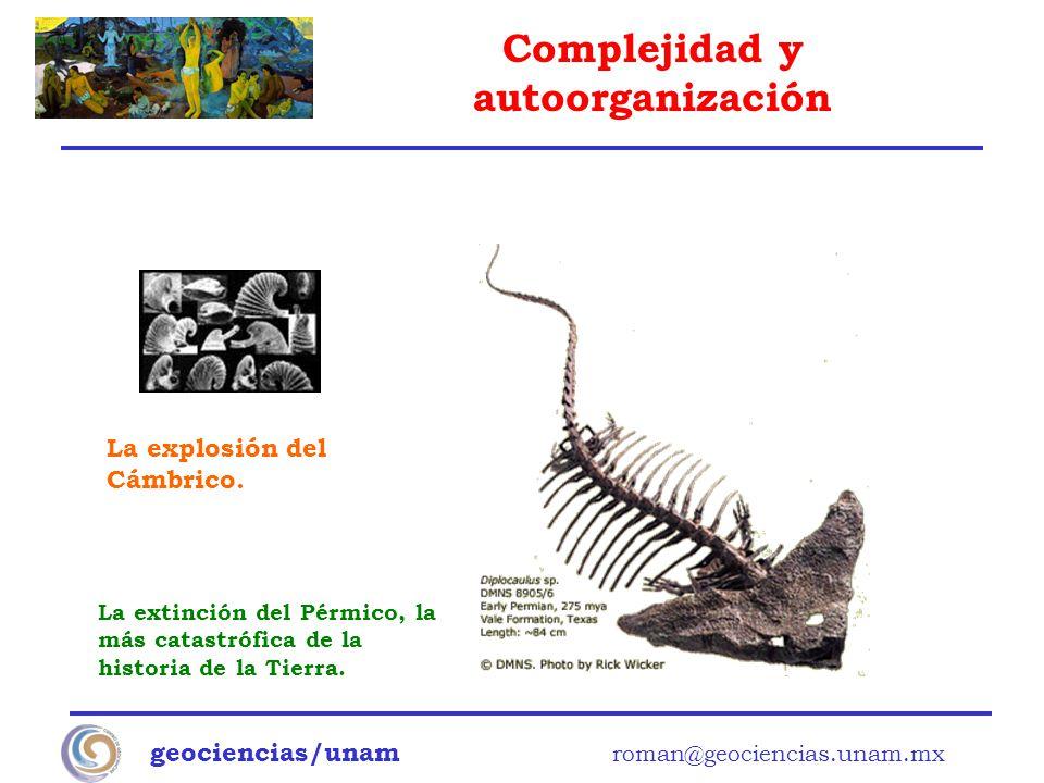 Complejidad y autoorganización geociencias/unam roman@geociencias.unam.mx La extinción del Pérmico, la más catastrófica de la historia de la Tierra. L
