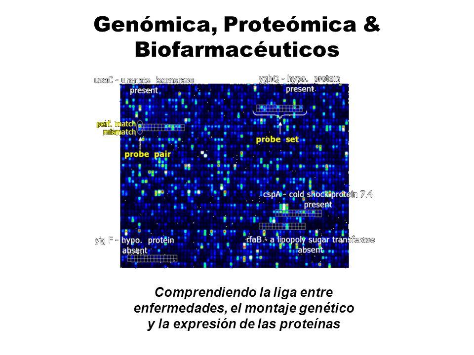 Genómica, Proteómica & Biofarmacéuticos Comprendiendo la liga entre enfermedades, el montaje genético y la expresión de las proteínas