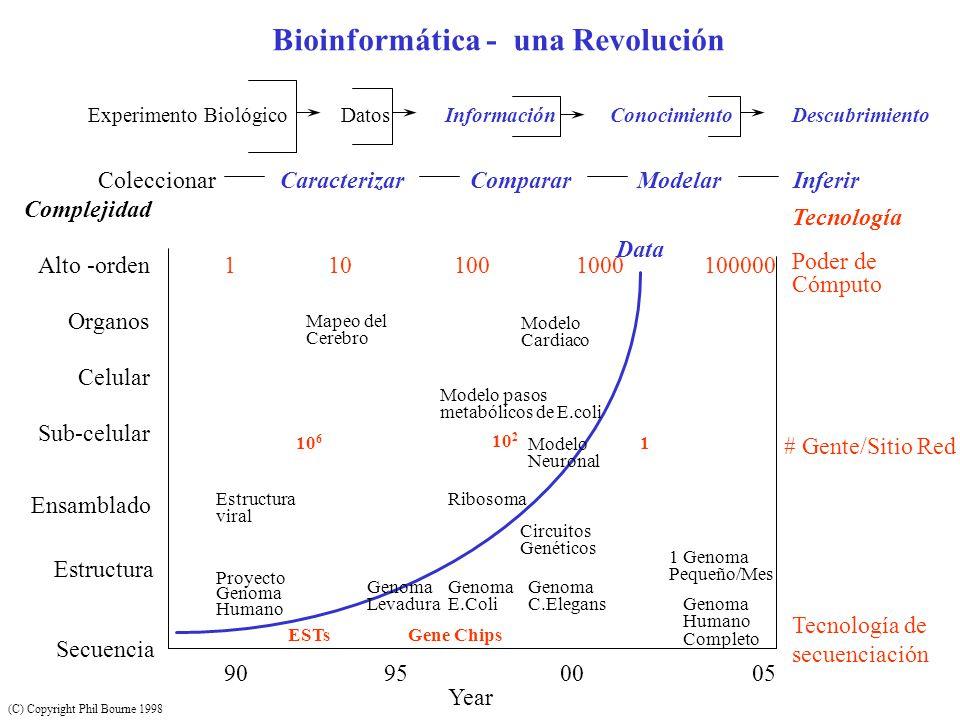 Bioinformática - una Revolución Experimento Biológico Datos Información Conocimiento Descubrimiento Coleccionar Caracterizar Comparar Modelar Inferir