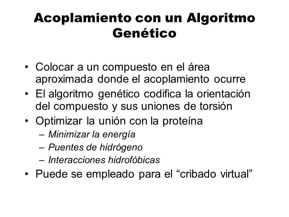 Acoplamiento con un Algoritmo Genético Colocar a un compuesto en el área aproximada donde el acoplamiento ocurre El algoritmo genético codifica la ori