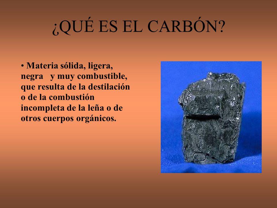 Formación El carbón se formó, principalmente, cuando los extensos bosques de helechos y equisetos gigantes que poblaban la Tierra hace unos 300 millones de años, en el período Carbonífero de la era paleozoica, morían y quedaban sepultados en los pantanos en los que vivían.