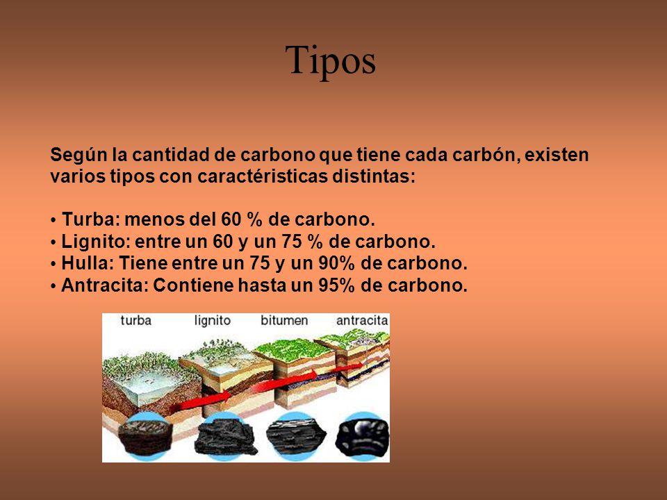TURBA Roca en la que se pueden distinguir bien los restos vegetales, lo que hace que tenga bajo poder calorífico.