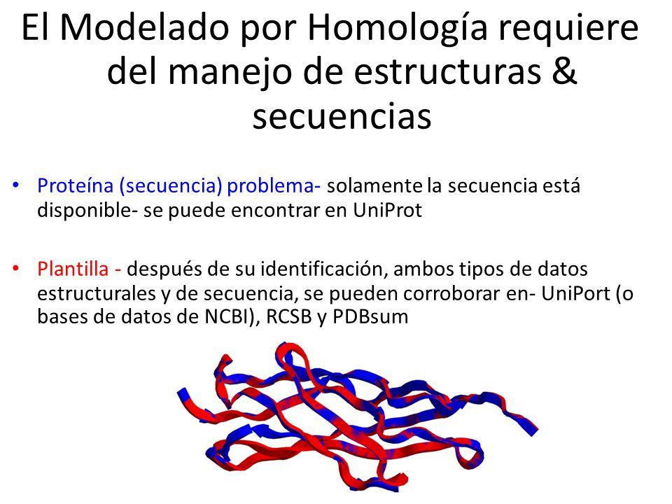 El Modelado por Homología requiere del manejo de estructuras & secuencias Proteína (secuencia) problema- solamente la secuencia está disponible- se puede encontrar en UniProt Plantilla - después de su identificación, ambos tipos de datos estructurales y de secuencia, se pueden corroborar en- UniPort (o bases de datos de NCBI), RCSB y PDBsum