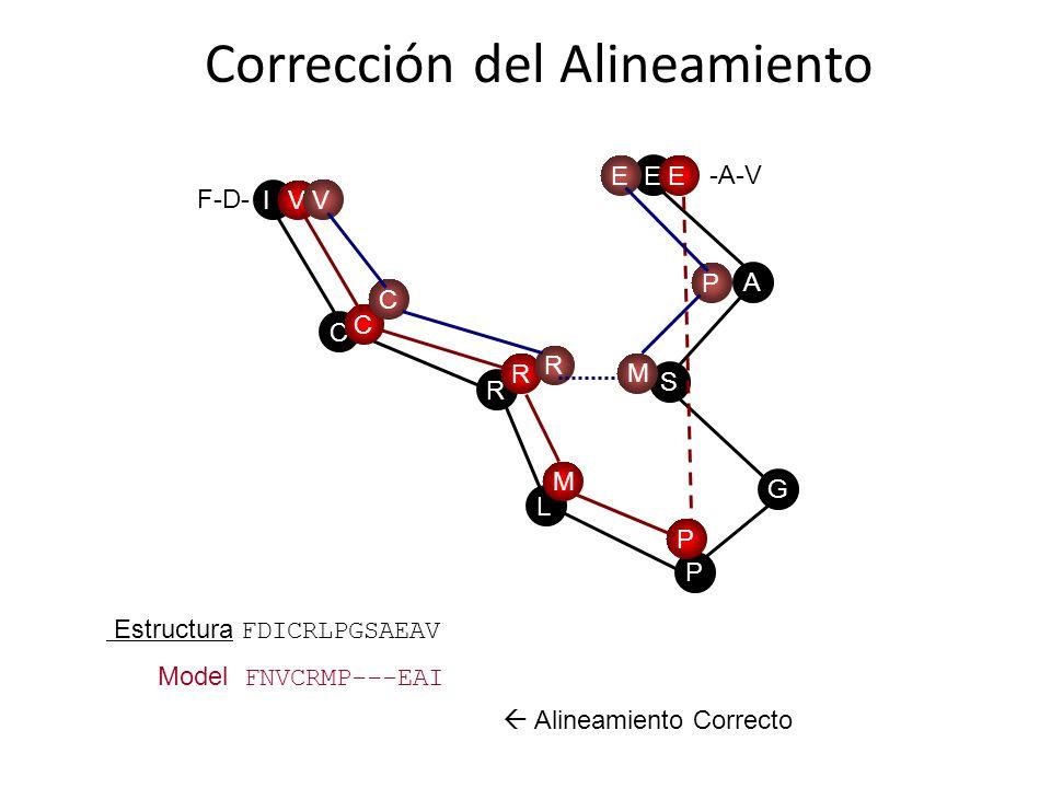 Determinantes Estructurales conservados Usar MSA Deleciones en tu secuencia modificar gaps Corrección del Alineamiento Estructura FDICRLPGSAEAV Model FNVCRMP---EAI Model FNVCR---MPEAI S G P L A E R C IV C R M P E V C R M P E Alineamiento Correcto F-D- -A-V
