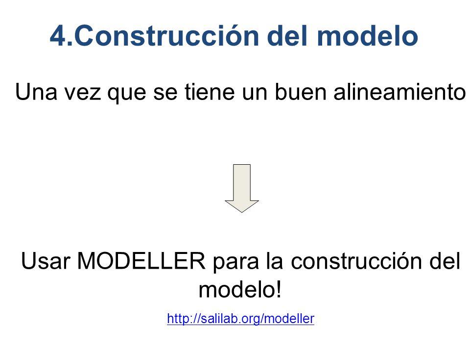 4.Construcción del modelo Una vez que se tiene un buen alineamiento Usar MODELLER para la construcción del modelo.