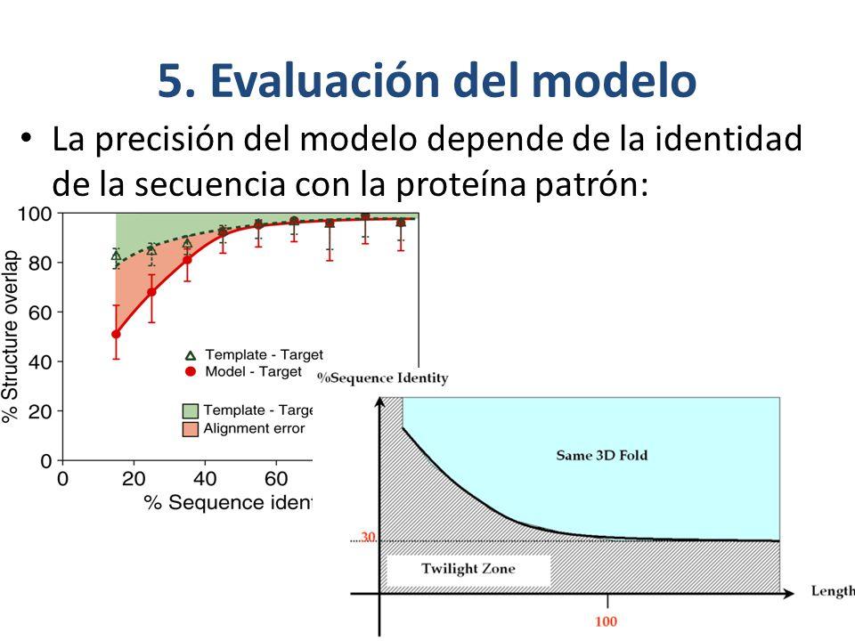 5. Evaluación del modelo La precisión del modelo depende de la identidad de la secuencia con la proteína patrón:
