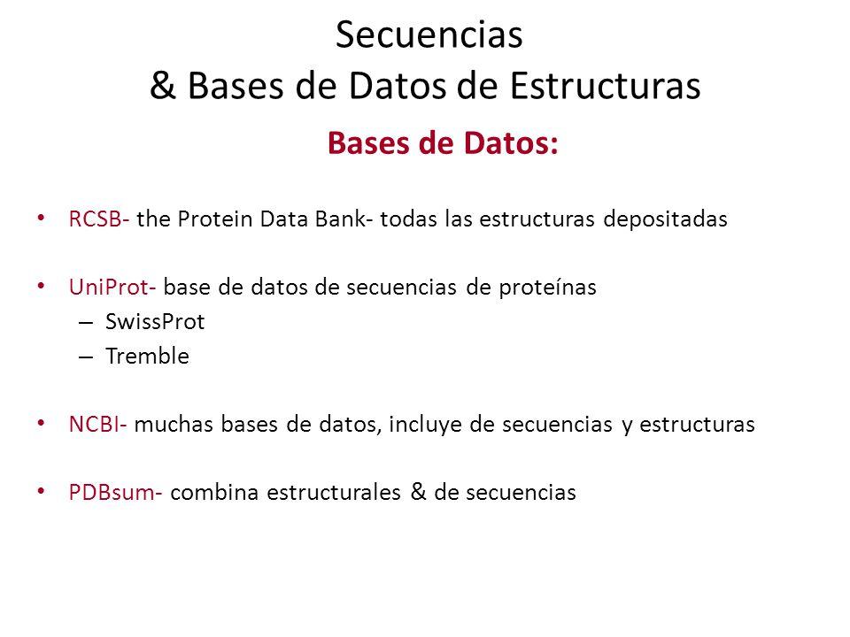 Secuencias & Bases de Datos de Estructuras Bases de Datos: RCSB- the Protein Data Bank- todas las estructuras depositadas UniProt- base de datos de secuencias de proteínas – SwissProt – Tremble NCBI- muchas bases de datos, incluye de secuencias y estructuras PDBsum- combina estructurales & de secuencias