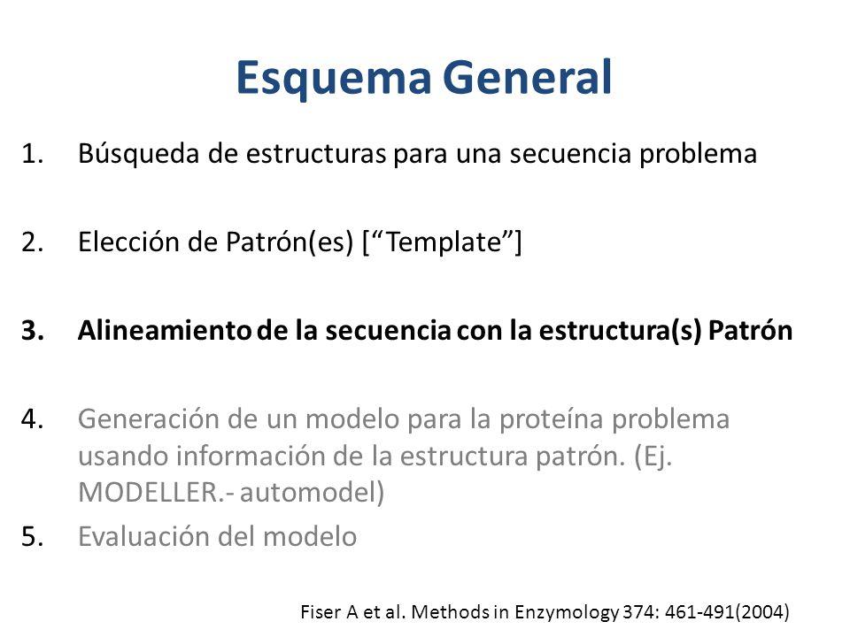 Esquema General 1.Búsqueda de estructuras para una secuencia problema 2.Elección de Patrón(es) [Template] 3.Alineamiento de la secuencia con la estructura(s) Patrón 4.Generación de un modelo para la proteína problema usando información de la estructura patrón.