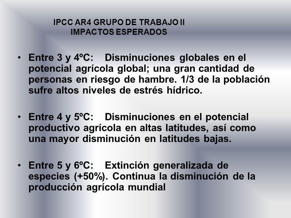 IPCC AR4 GRUPO DE TRABAJO II IMPACTOS ESPERADOS Entre 3 y 4ºC:Disminuciones globales en el potencial agrícola global; una gran cantidad de personas en